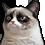 :grumpycat: